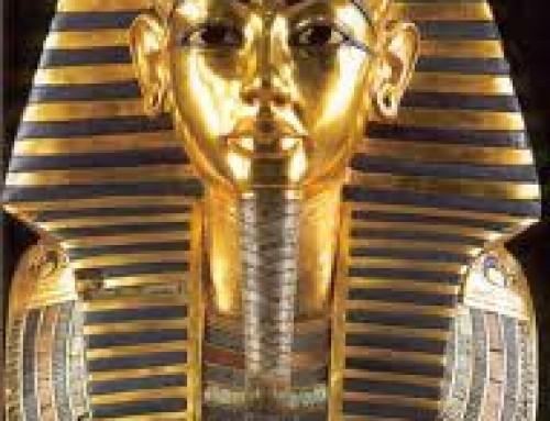 A Gestão do Luxo: Como compreender a sociedade do excedente